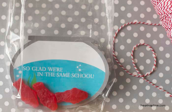 "OMG these are too cute! ""I'm glad we're in the same school"" free Valentine printable from iheartnaptime.com . Print out and put in a plastic bag with Swedish fish or Goldfish."