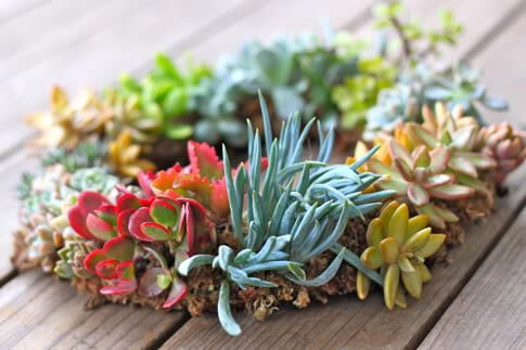 Top 50 DIY Spring Wreaths on iheartnaptime.com -so many cute ideas!