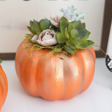 DIY succulent pumpkins -a cute and simple piece of fall decor that will only cost you a couple bucks to make!