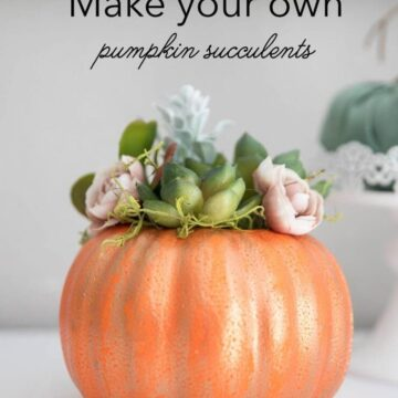 DIY pumpkin with succulents -a cute and simple piece of fall decor that will only cost you a couple bucks to make!