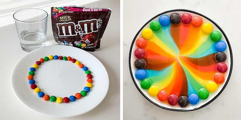 m&m rainbow experiment